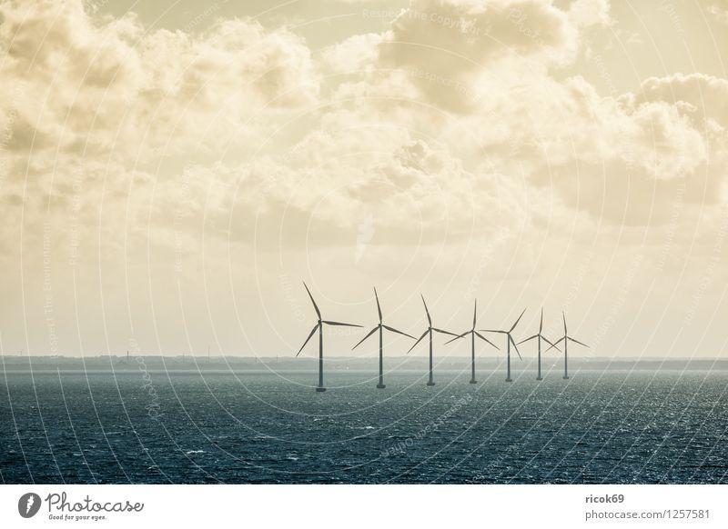 Windräder Sonne Windkraftanlage Natur Landschaft Wolken Küste Ostsee Meer Energie Umwelt Himmel Farbfoto Gedeckte Farben Außenaufnahme Menschenleer Tag