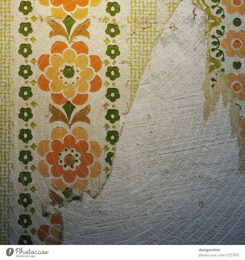 Tapetenwechsel alt Blume Wand Kindheit Zeit modern kaputt Vergänglichkeit Vergangenheit Handwerk Tradition Renovieren vergangen Wert Ablehnung