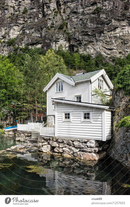 Ein Haus in Geiranger Erholung Ferien & Urlaub & Reisen Berge u. Gebirge Natur Landschaft Wasser Baum Wald Hütte Gebäude Architektur Idylle Tourismus