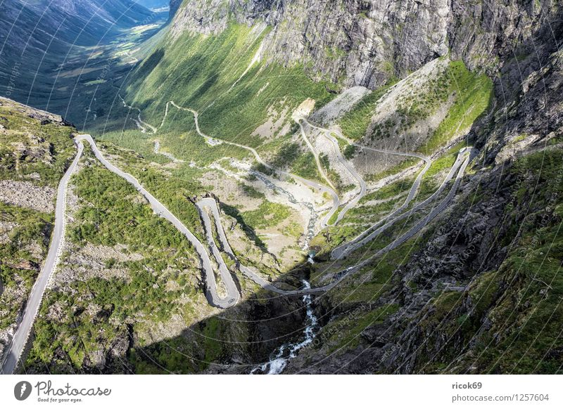Trollstigen Erholung Ferien & Urlaub & Reisen Berge u. Gebirge Natur Landschaft Straße Idylle Norwegen Møre og Romsdal Reiseziel Skandinavien Farbfoto