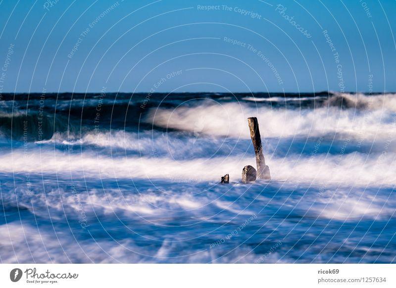 Buhne an der Ostsee Erholung Ferien & Urlaub & Reisen Strand Meer Wellen Natur Landschaft Wasser Sturm Küste Holz Romantik Idylle Buhnen Mecklenburg-Vorpommern