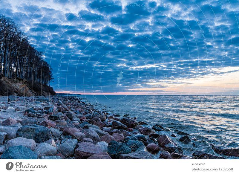 Steine an der Ostsee Erholung Ferien & Urlaub & Reisen Strand Meer Landschaft Wasser Felsen Küste blau Natur Tourismus Mecklenburg-Vorpommern Heiligendamm
