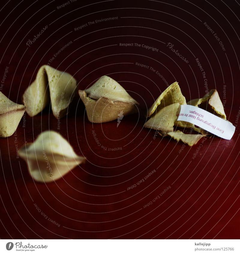 exportschlager Glückskeks Backwaren knusprig Redewendung Zukunft Gesellschaftsspiele Weisheit China Chinesisch Tradition rot Lebensmittel Papier süß