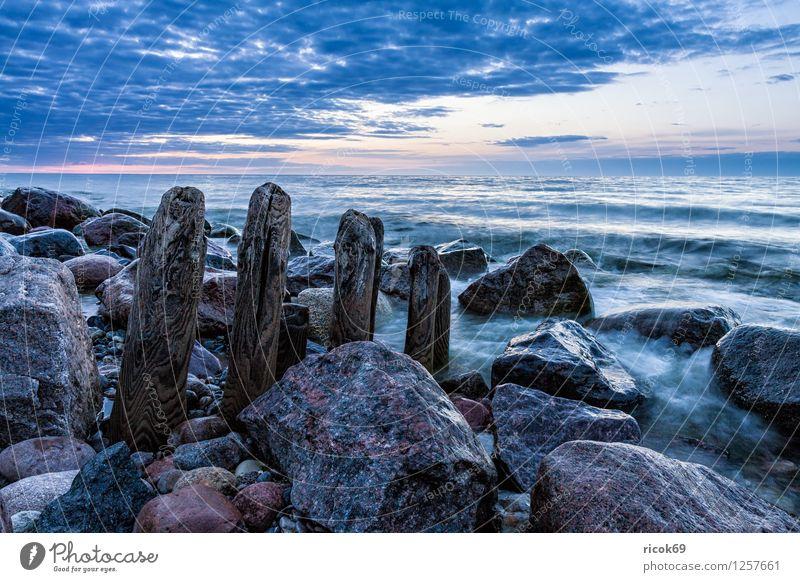 Buhne an der Ostsee Erholung Ferien & Urlaub & Reisen Strand Meer Landschaft Wasser Felsen Küste Stein blau Mecklenburg-Vorpommern Heiligendamm Himmel