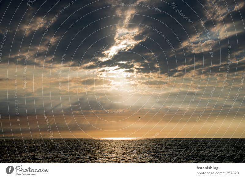 Niemand steht im Rampenlicht Umwelt Natur Landschaft Luft Wasser Himmel Wolken Horizont Sonne Sonnenaufgang Sonnenuntergang Sonnenlicht Sommer Wetter