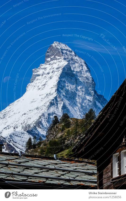 Dachfirst Ferien & Urlaub & Reisen Tourismus Ausflug Freiheit Berge u. Gebirge wandern Umwelt Natur Landschaft Wolkenloser Himmel Baum Felsen Alpen Matterhorn