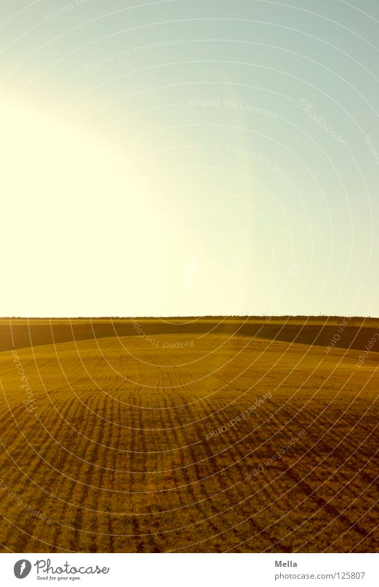 straight ahead Feld Furche Aussaat säen geradeaus Schnur Horizont Ackerbau Landwirtschaft ökologisch Beleuchtung rund Halbkreis Gegenlicht Strahlung grün Luft