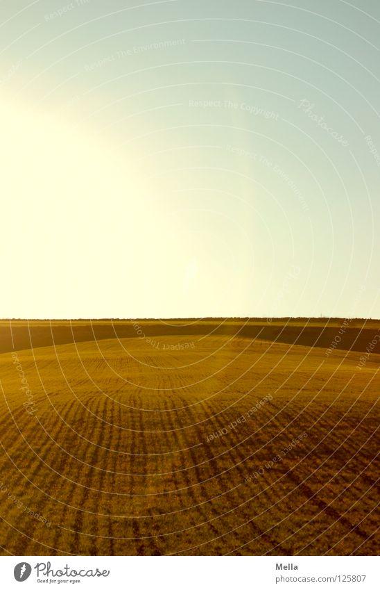 straight ahead Himmel Sonne grün blau Pflanze Luft Linie Beleuchtung Feld Horizont Erde Kreis rund Bodenbelag Spuren Schnur