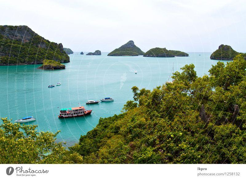 Bootsküste einer grünen Lagune a Ferien & Urlaub & Reisen Tourismus Ausflug Freiheit Sommer Strand Insel Natur Pflanze Sand Schönes Wetter Baum Blume Blatt