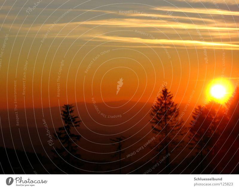 Sonnenlicht Berge u. Gebirge Himmel Baum Wald dunkel hell blau gelb Kondensstreifen Himmelskörper & Weltall orange Kreis Sonnenaufgang Sonnenuntergang Nebel