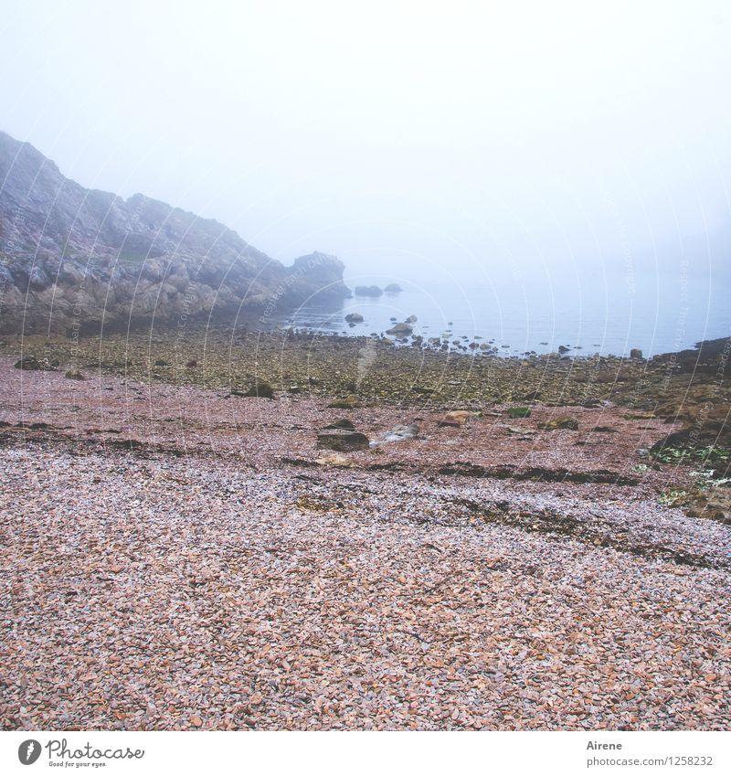 sich Zeit nehmen Landschaft Nebel Strand Bucht Meer Ärmelkanal England kalt positiv trist weich blau rot Gelassenheit Trauer Sehnsucht Einsamkeit Stimmung ruhig