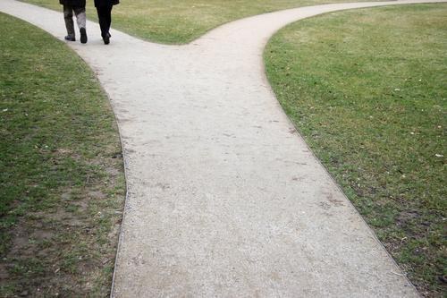 Üpsylon Lateinisches Alphabet Abzweigung Entscheidung unentschlossen Zweifel verbinden Zusammensein gehen Spaziergang Luft Park grün Grünfläche Wiese gepflegt