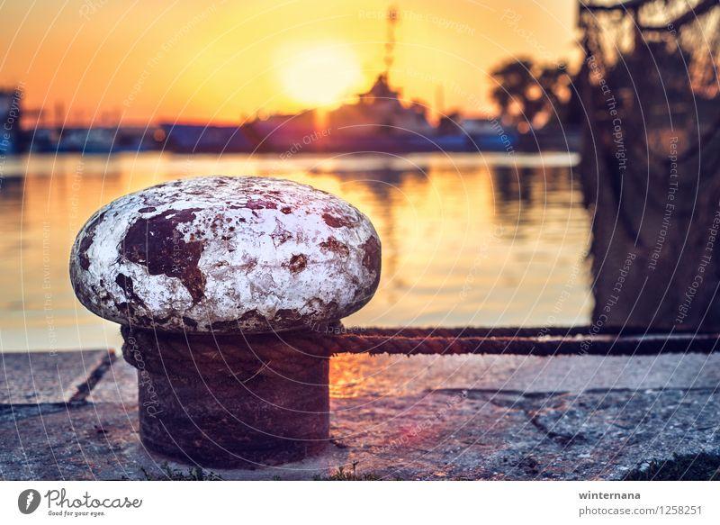 Großer Pilz auf Sonnenuntergang durch das Meer Himmel Sonnenaufgang Sonnenlicht Sommer Küste Bucht mehrfarbig gelb gold orange Gefühle Tatkraft Warmherzigkeit