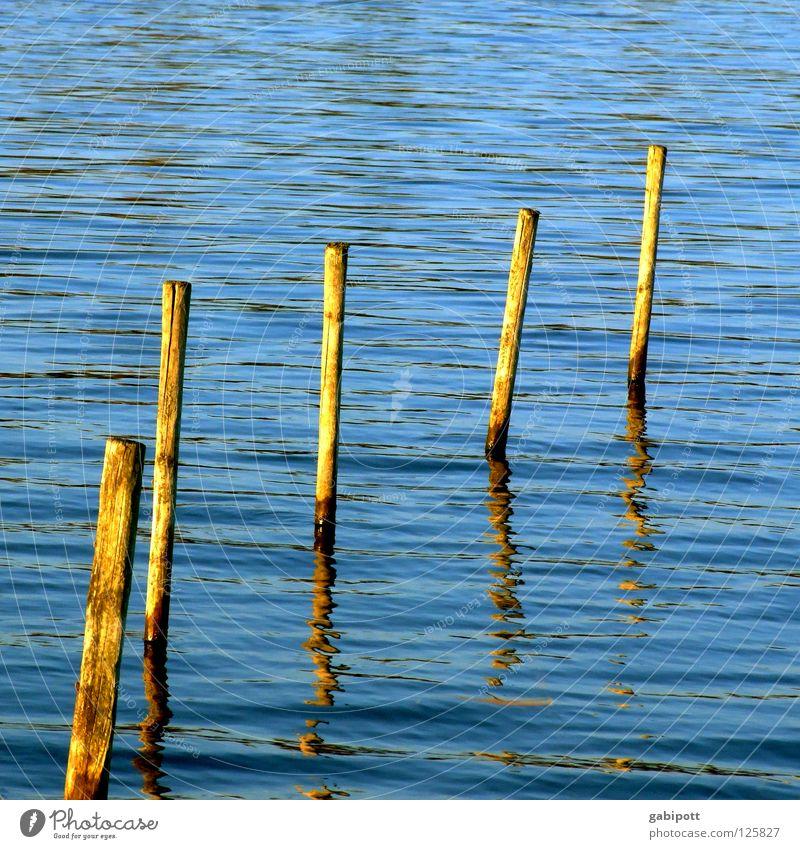 pfünf pfähle Natur Wasser blau Leben kalt Erholung Holz See Zufriedenheit Kraft Wellen glänzend leer Sauberkeit Gelassenheit