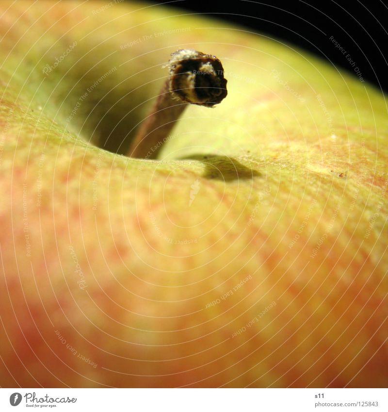Apple Natur grün rot gelb Gesundheit Frucht süß rund Apfel Wut Stengel Vitamin Glätte saftig knackig