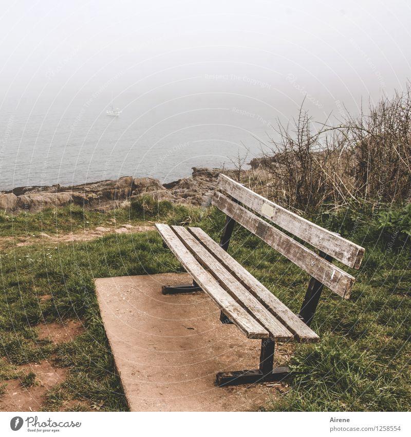 ship watching Landschaft schlechtes Wetter Nebel Küste Meer Bank Holz Ferien & Urlaub & Reisen Blick sitzen warten groß braun trüb Wasserfahrzeug