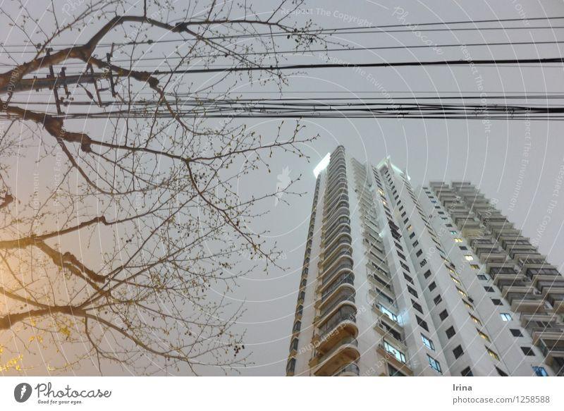 late nights of Shanghai Kabel Baum Hochhaus Balkon warten Häusliches Leben trist Stadt grau Einsamkeit Mittelstand Nachtaufnahme Gedeckte Farben Außenaufnahme