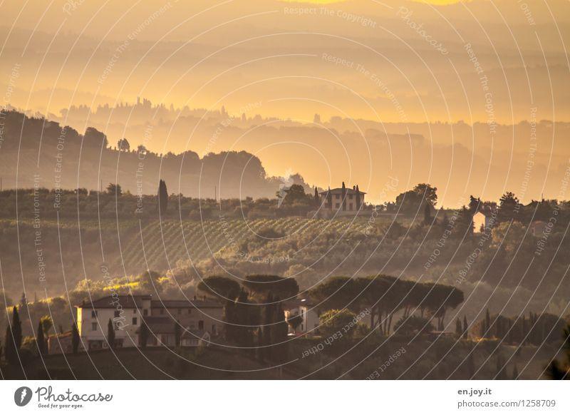 Morgenstund... Natur Ferien & Urlaub & Reisen Sommer Landschaft ruhig Haus Ferne Umwelt gelb Wärme Tourismus Nebel Klima Lebensfreude Italien Schönes Wetter