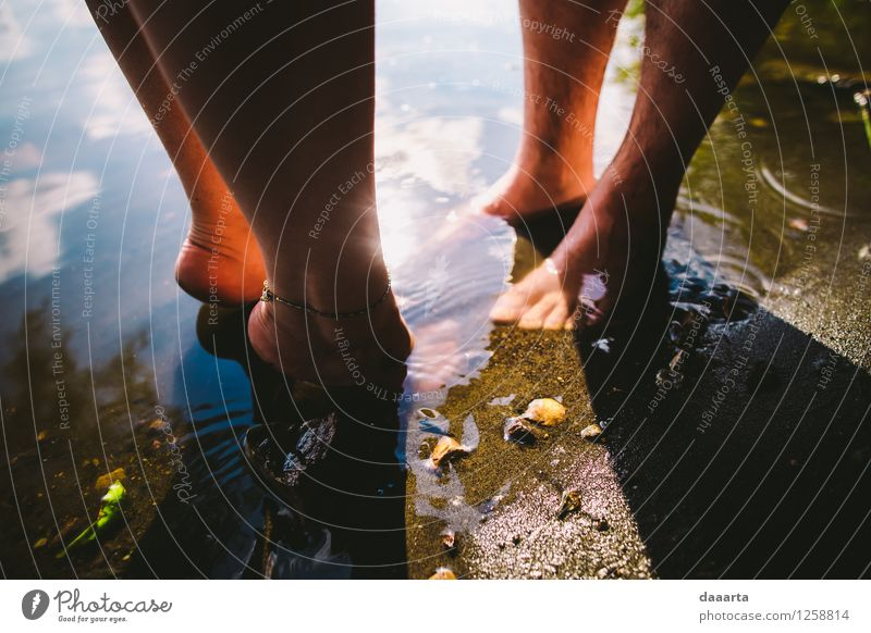 die Sonne genießen Lifestyle Stil Freude schön Leben harmonisch Sinnesorgane Erholung Freizeit & Hobby Spielen Ausflug Abenteuer Freiheit Sommer Sommerurlaub