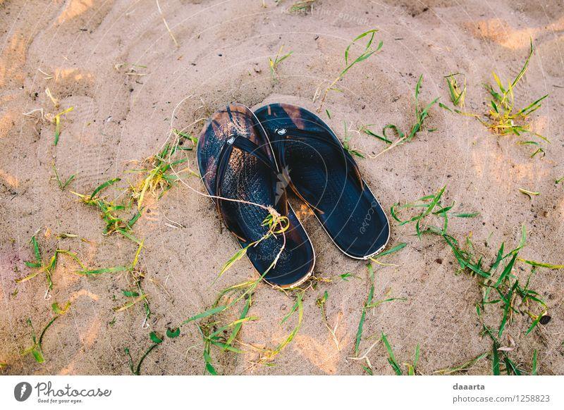 Sommerabende Natur Erholung Freude Strand Leben Gras Küste Stil Freiheit Lifestyle Stimmung Sand wild Freizeit & Hobby Fröhlichkeit Ausflug