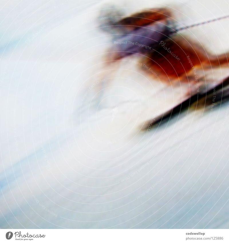 ski sunday Skier Skifahrer Abfahrtsrennen Konzentration Wintersport Sportveranstaltung Konkurrenz Geschwindigkeit blur race Schnee downhill Bewegung umnebelt