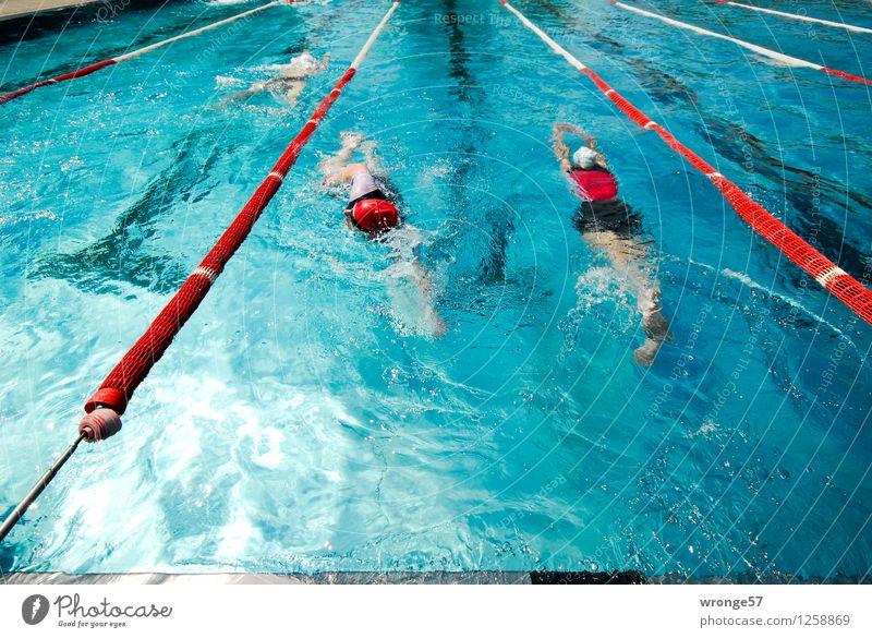 Gegenverkehr Sport Wassersport Sportler Sportveranstaltung Triathlon Schwimmsport Schwimmen & Baden Schwimmbad Mensch maskulin 3 Menschengruppe Fitness