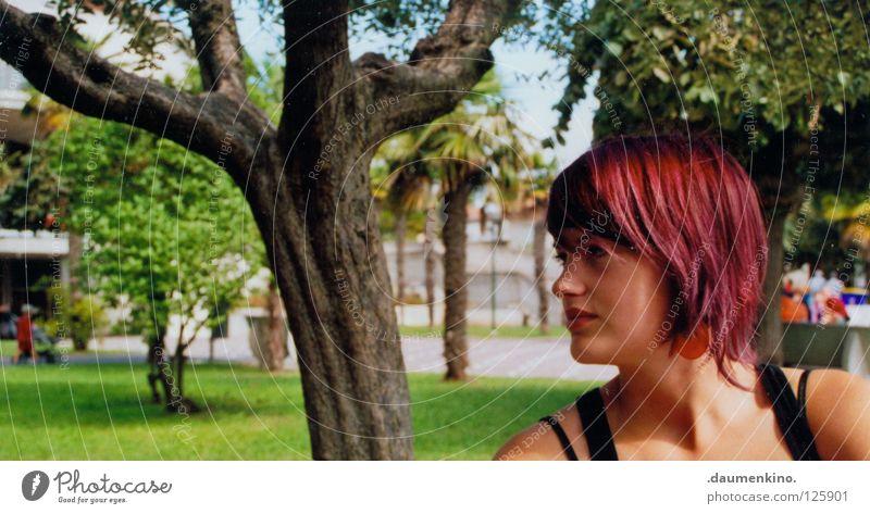 Baumhypnose Frau Mensch Sommer Wiese Haare & Frisuren Konzentration