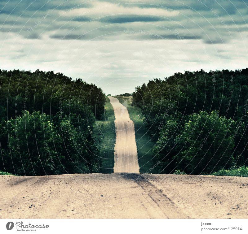 Durchschnitt Ferne Natur Landschaft Himmel Wolken schlechtes Wetter Baum Wald Hügel Wellen Verkehrswege Straße Wege & Pfade gehen laufen grün beige Fahrbahn