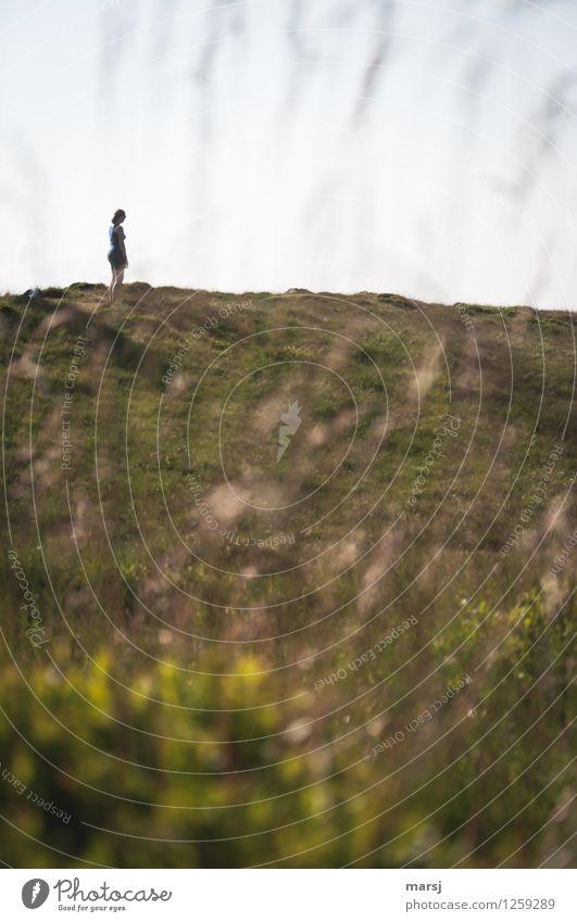 Einsamkeit harmonisch Erholung ruhig Meditation Mensch feminin Junge Frau Jugendliche Erwachsene 1 Natur Landschaft Sommer Schönes Wetter Wiese Hügel beobachten
