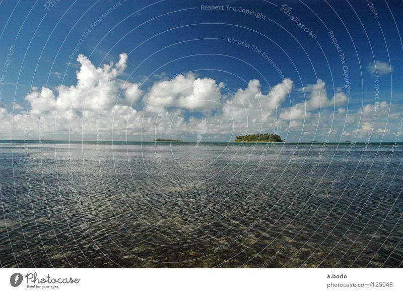 Besuch im Königreich Wasser Himmel Meer Strand Küste Insel Pazifik Vulkaninsel