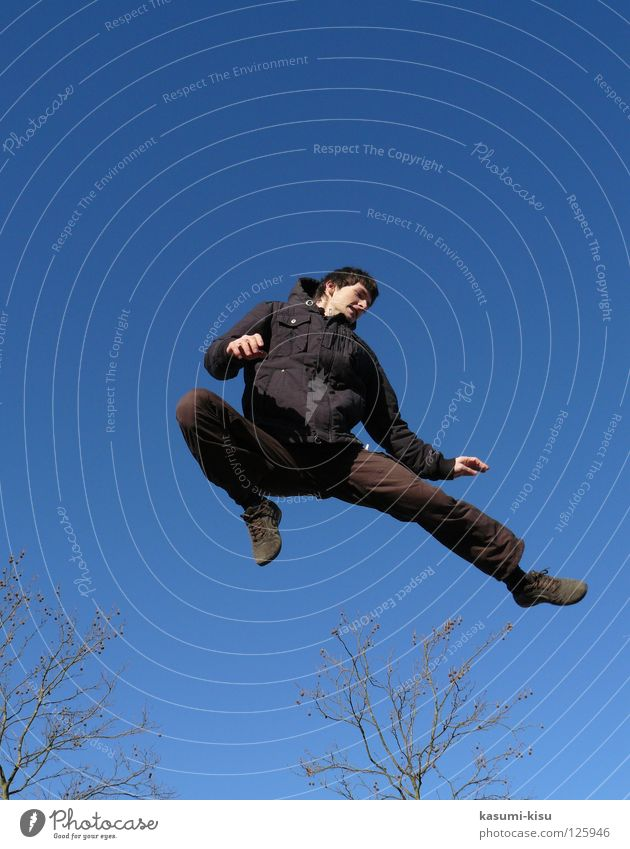 kleiner Bruce Lee Himmel Mann Winter schwarz Spielen springen braun Ast Konzentration Farbe