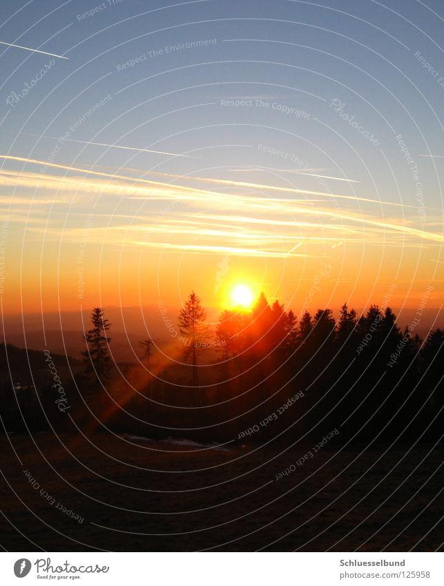 Sonnenstrahlen Himmel weiß blau Baum Wolken schwarz Wald gelb Wiese Berge u. Gebirge orange Beleuchtung Hügel Baumkrone Himmelskörper & Weltall
