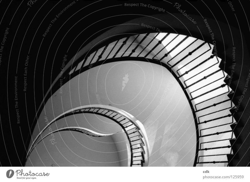 Innenansichten II Treppenhaus Flur Treppengeländer Etage Wand Gebäude Konstruktion Licht rein einfach rund geschwungen gekrümmt Kurve Muster Schwung Dreharbeit