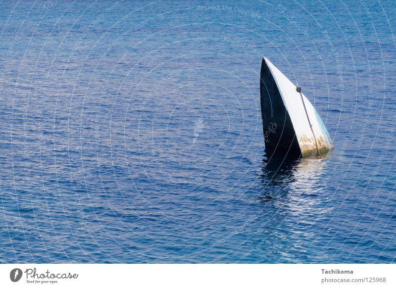 sydney opera house, gesunken Wasser weiß Meer blau träumen See Wasserfahrzeug Schifffahrt untergehen Algen