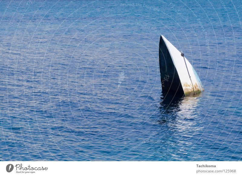 sydney opera house, gesunken Wasserfahrzeug Meer untergehen träumen See weiß Algen Schifffahrt blau