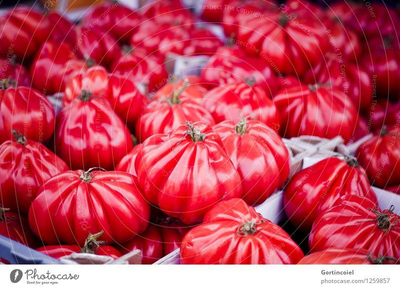 Ochsenherzen rot Gesundheit Lebensmittel frisch Ernährung Gemüse lecker Bioprodukte Markt Vegetarische Ernährung Tomate Italienische Küche Marktstand