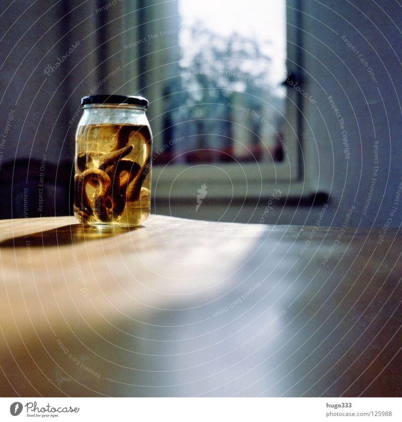 Anna's snake Sonne gelb Tod Fenster Holz Glas Tisch dünn lang Gift Schlange Reptil Mittelformat Möbel Einmachglas