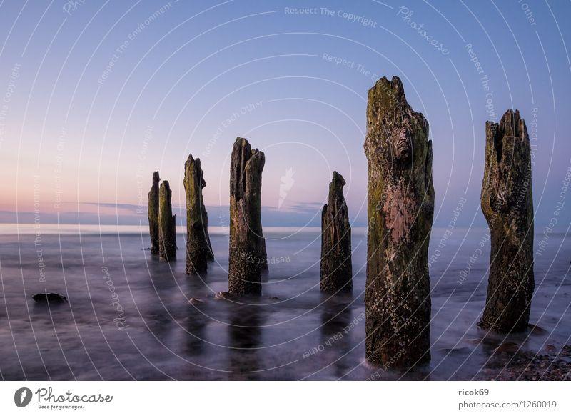 Buhnen Erholung Ferien & Urlaub & Reisen Strand Meer Wellen Natur Landschaft Wasser Wolkenloser Himmel Küste Ostsee Stein Holz blau Romantik Idylle