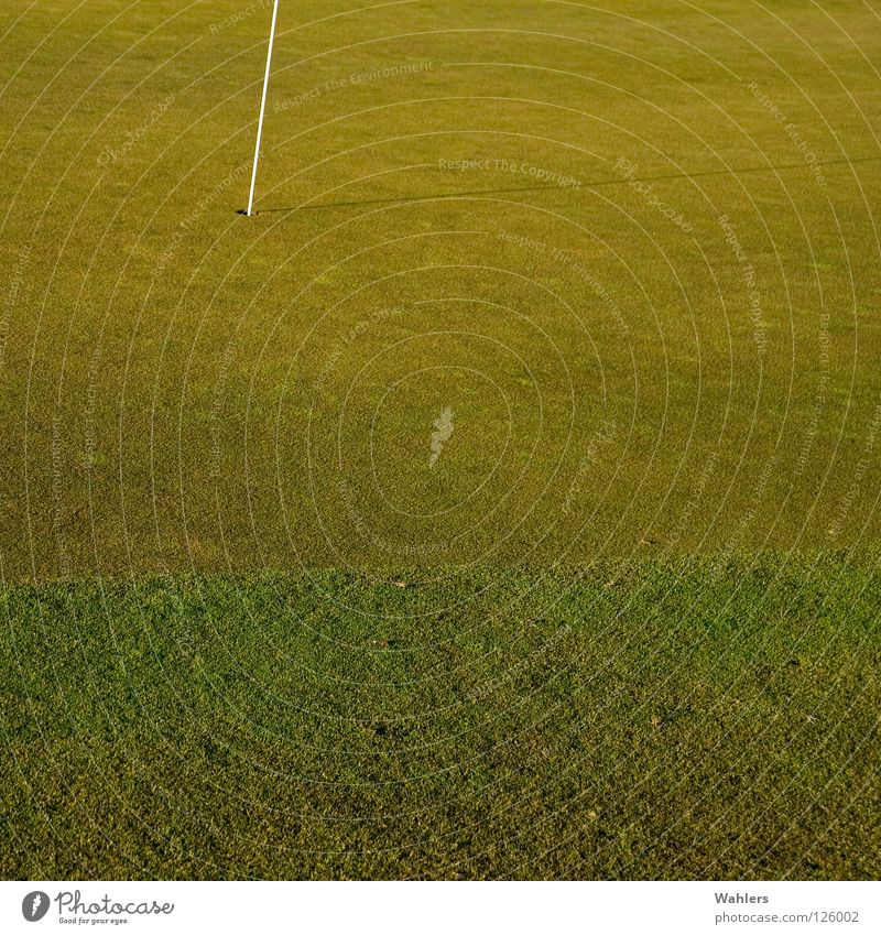 Auf dem Golfplatz I alt weiß grün Winter Sport Herbst Spielen Ball Rasen Golf Loch Stab verhaften Rasenmäher Ravensburg
