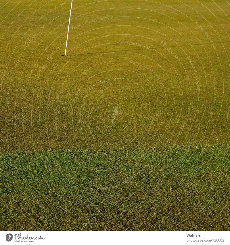 Auf dem Golfplatz I alt weiß grün Winter Sport Herbst Spielen Ball Rasen Loch Stab verhaften Rasenmäher Ravensburg