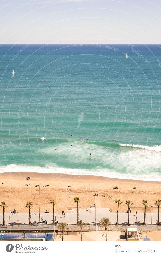 Strandtag Schwimmen & Baden Surfen Schwimmsport Im Wasser treiben Sommer Sommerurlaub Sonne Sonnenbad Meer Wellen Meerwasser Sport Wassersport Segeln Mensch