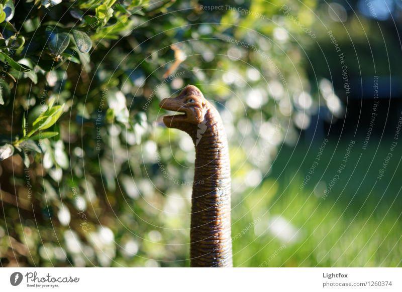 Giraffendino Tier Wildtier Totes Tier Tiergesicht Schuppen Fährte Zoo 1 Globus alt wählen natürlich trashig verrückt wild Dinosaurier Fressen Urzeit Garten