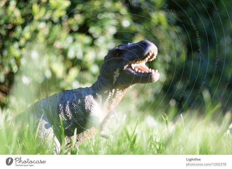 Tyrannosaurus Ex-Freundin Labor Unternehmen Erfolg Uhr Menschenleer Sehenswürdigkeit Tier Wildtier Totes Tier Zoo 1 Fressen füttern Jagd kämpfen schreien grün