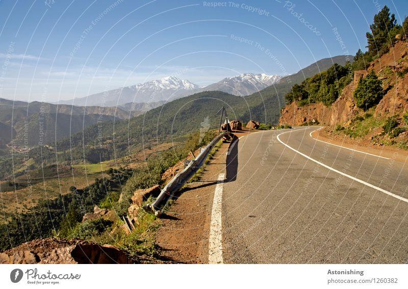 in die Berge Umwelt Natur Landschaft Pflanze Himmel Horizont Sommer Wetter Schönes Wetter Schnee Baum Blume Sträucher Wiese Feld Wald Hügel Berge u. Gebirge