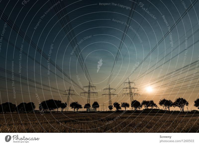 Familienausflug beendet... Strommast Leitung Energiewirtschaft Natur Landschaft Himmel Sonne Sonnenaufgang Sonnenuntergang Sonnenlicht Sommer Schönes Wetter