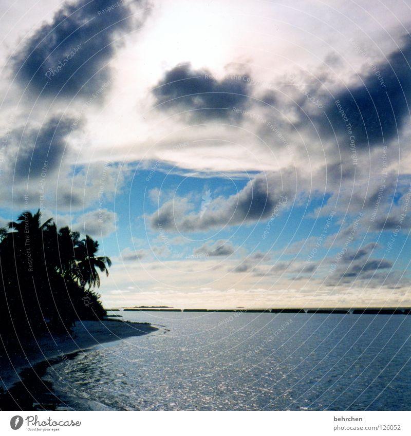 fetzenwolken Wasser Himmel Meer Sommer Strand Ferien & Urlaub & Reisen Wolken Insel Asien genießen Palme Fernweh Malediven Paradies Trauminsel Indischer Ozean
