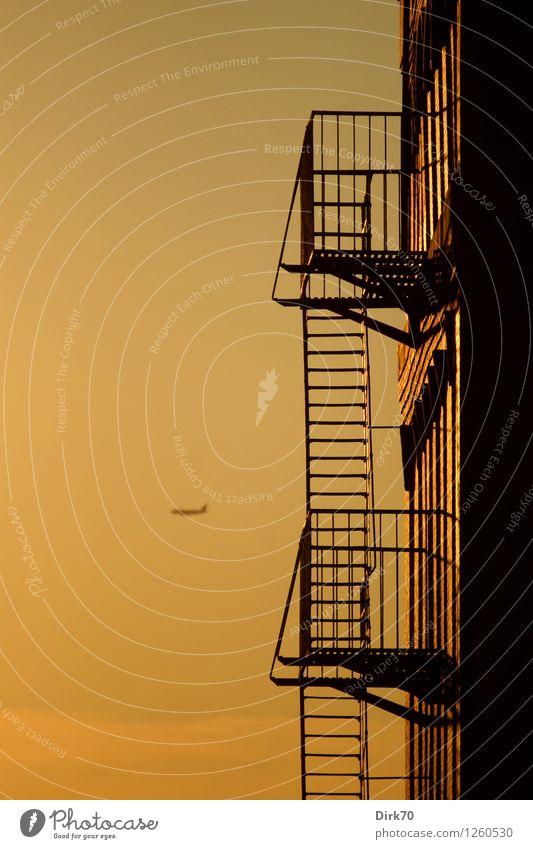 Träume von der Ferne Ferien & Urlaub & Reisen Tourismus Freiheit Sommer Luftverkehr Himmel Sonnenaufgang Sonnenuntergang Sonnenlicht Schönes Wetter