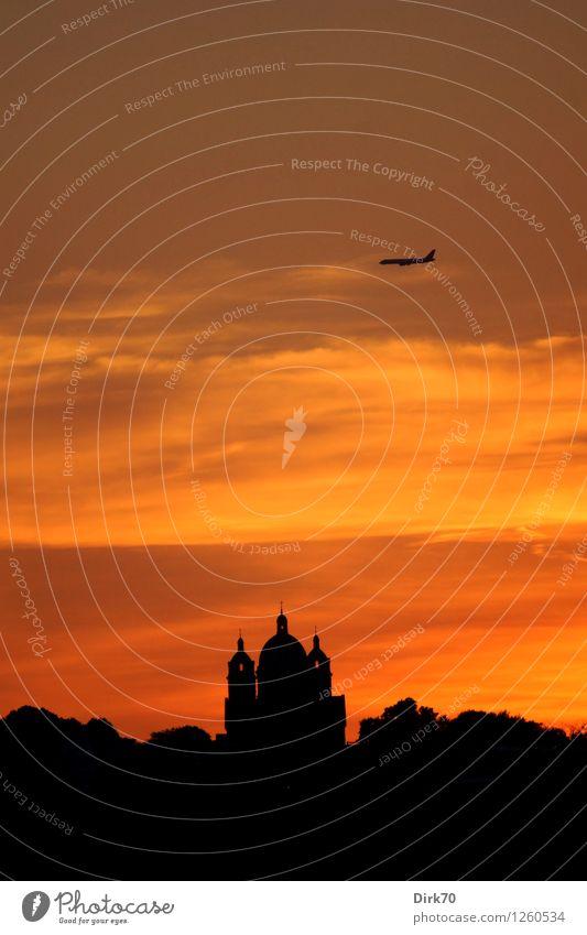 Himmlischer Bote Himmel Ferien & Urlaub & Reisen schön Baum Wolken dunkel gelb Wärme Architektur Gebäude Religion & Glaube fliegen Park leuchten Luftverkehr
