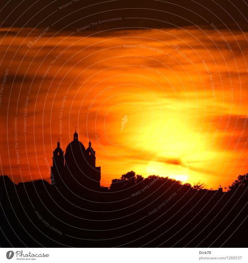 Feuerball Himmel schön Sommer Sonne Baum Wolken dunkel schwarz gelb natürlich Religion & Glaube außergewöhnlich Horizont Fassade Park orange