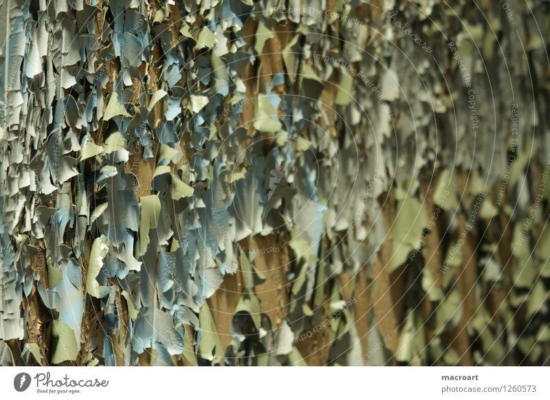 Der Lack ist ab Farbstoff lackfarben abblättern mehrfarbig gelb grün rein Wand fallen klein Teile u. Stücke Puzzle alt verfallen Anstrich Sanieren Renovieren